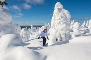 Schneeschuhwandern im Nationalpark Syöte