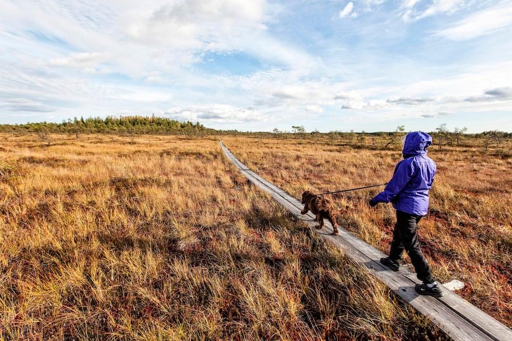Nationalpark Kouvola u. Kotka-Hamina - Valkmusa National Park