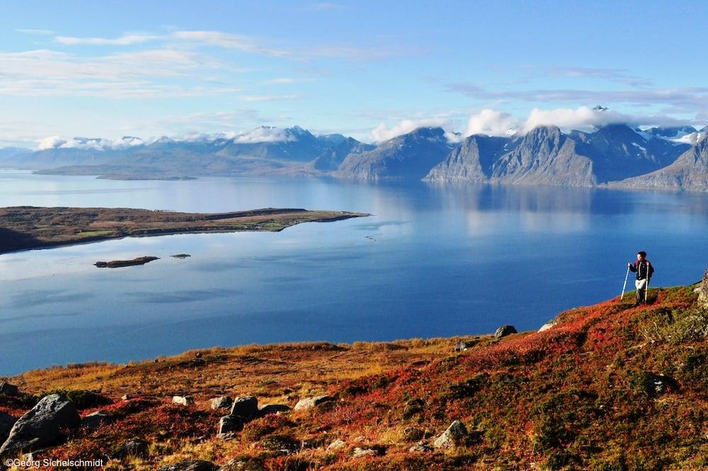 Sommer am Lyngenfjord