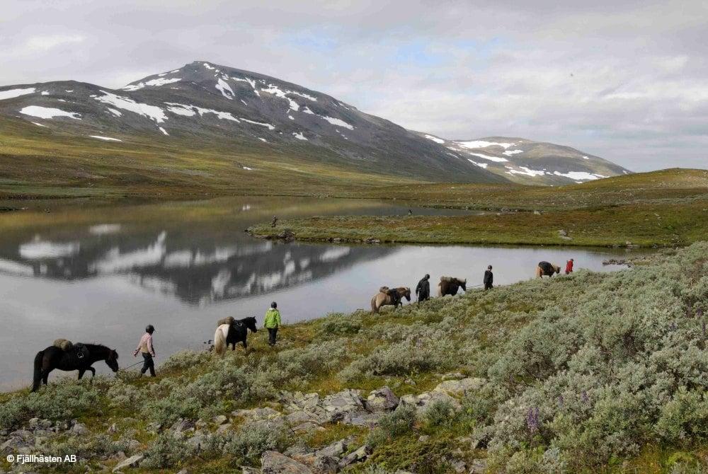 Bergtour mit Pferden im Vindelfjäll