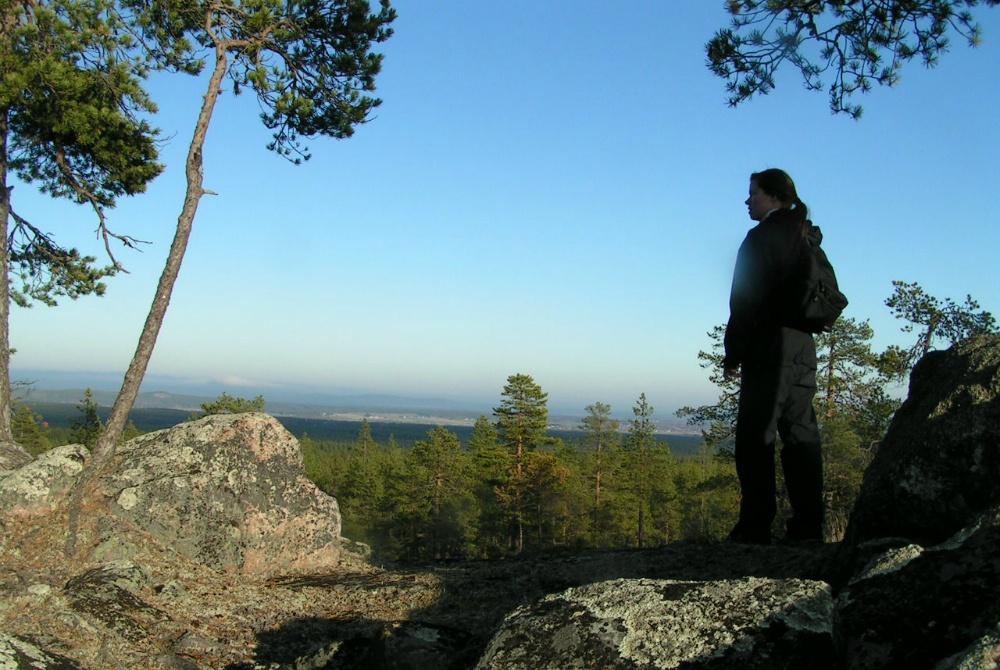 Baumcamping Piteå