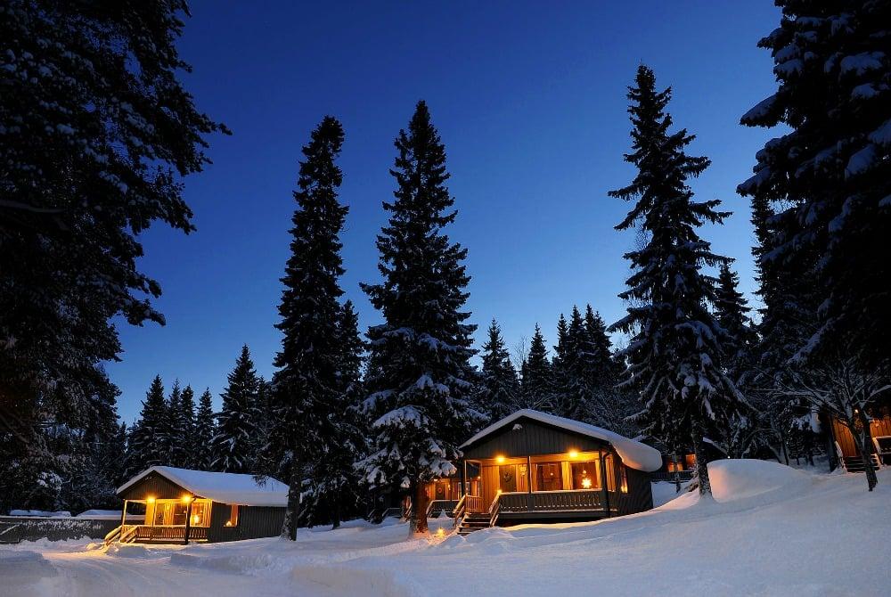 ITB Aussteller - Brändön Lodge - Pine Bay Lodge