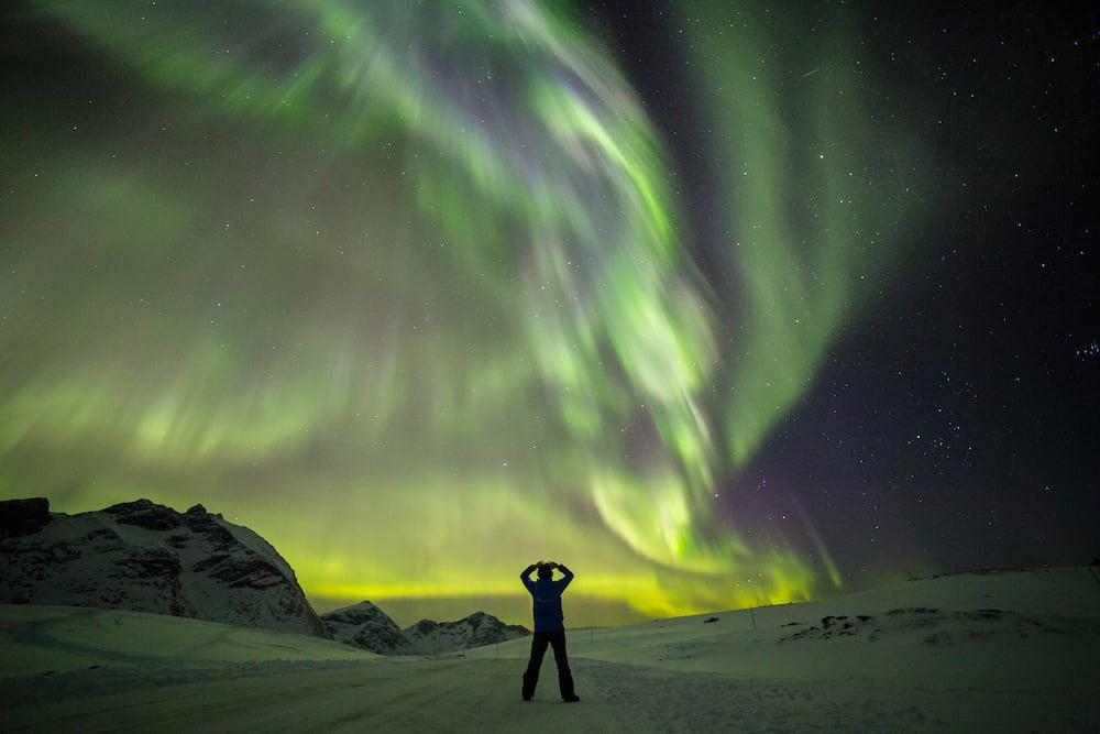 ITB Aussteller Tromsø Safari