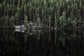 Finland_Tarvainen_Joensuu