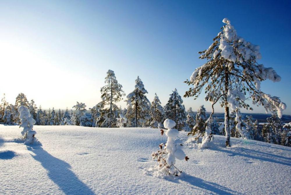 LaplandPro_Winter_Helsinki-Levi-Spezial_1000.jpg