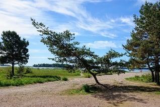 DSC_0979-Copyright-Visit Vuosaari_Pekka Pirkkala