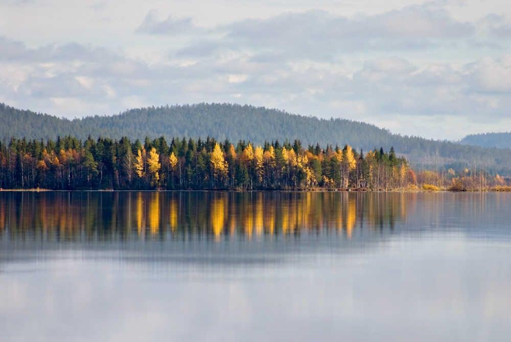 Kemijärvi-ruska