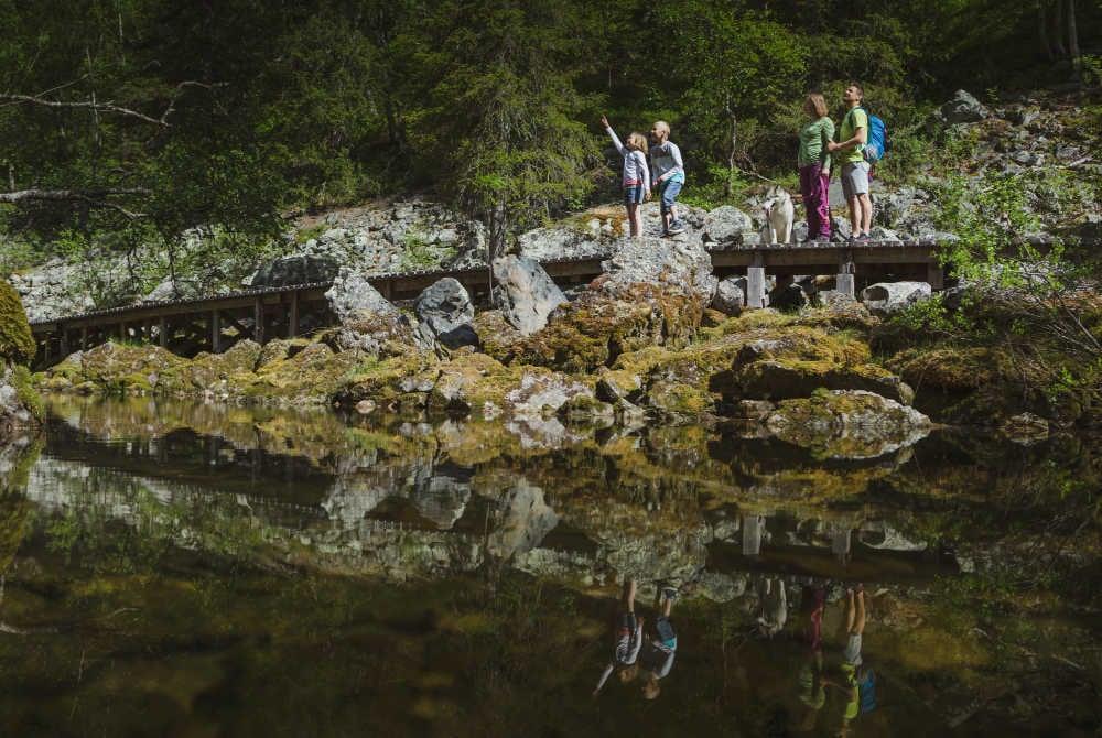 PyhaLuosto_hiking_national_park