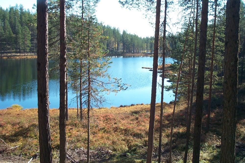 Höga Kusten Walkabout - Lilldaltjärn