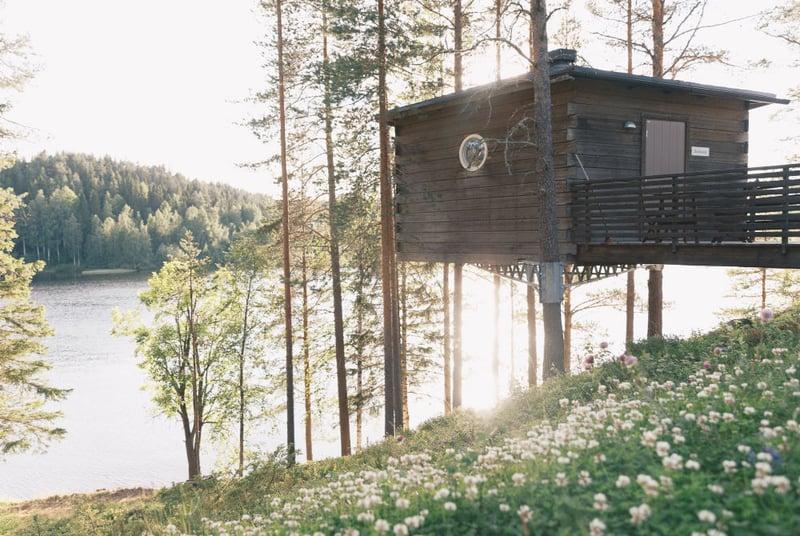 Granö Beckasin-Vogel Nest