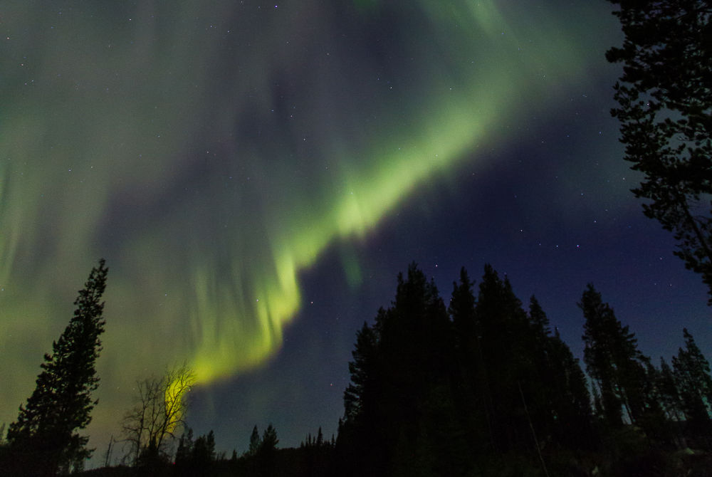 Wolverine Fell Wilderness and Nature-Auroras in Lapland- Levi