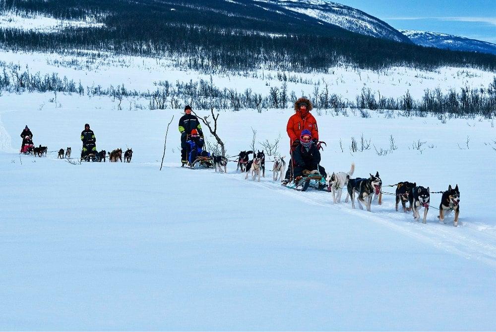 Hundeschlittentour in der Region Lyngenfjord
