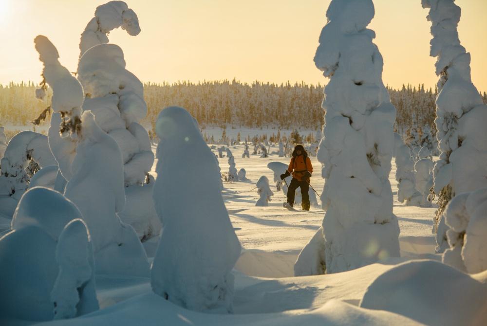 Syöte_Winter_1000