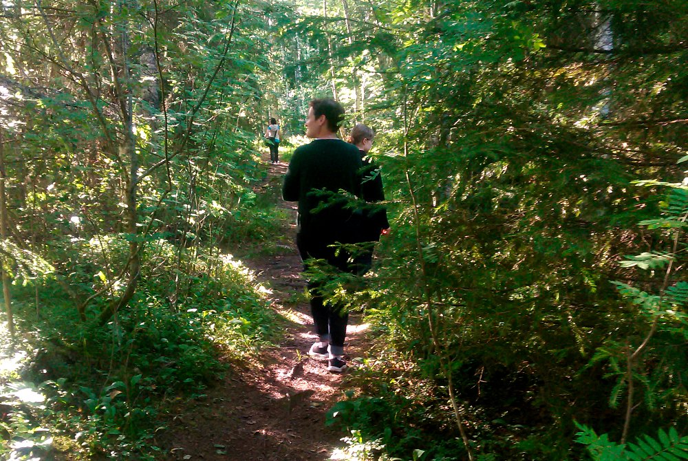 Sound-Silence-Natur-als-Inspiration-Wanderung-der-Stille
