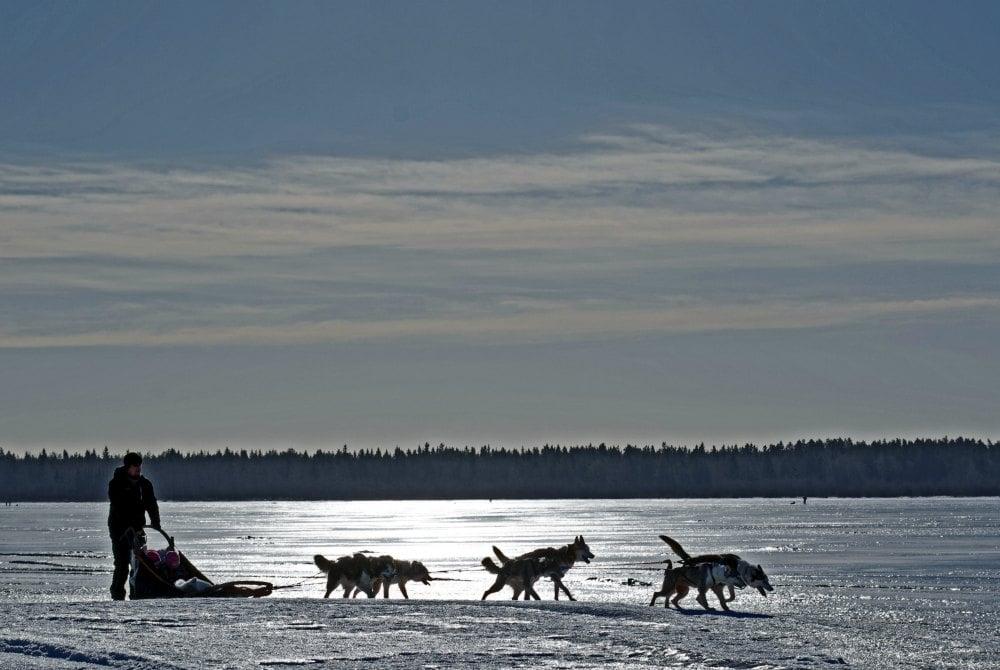 Huskysafari auf dem gefrorenen See