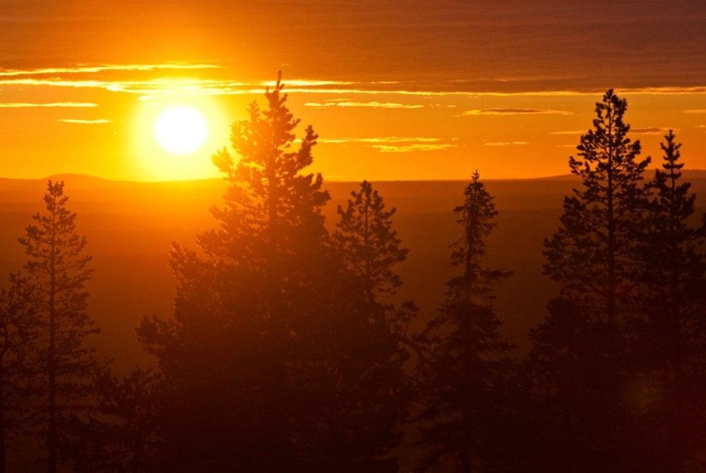 Lapland Safaris Sommer Landschaft