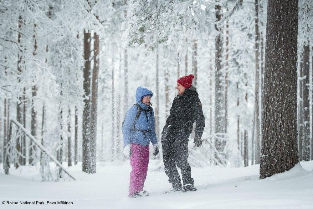 winter-im-rokua-geopark