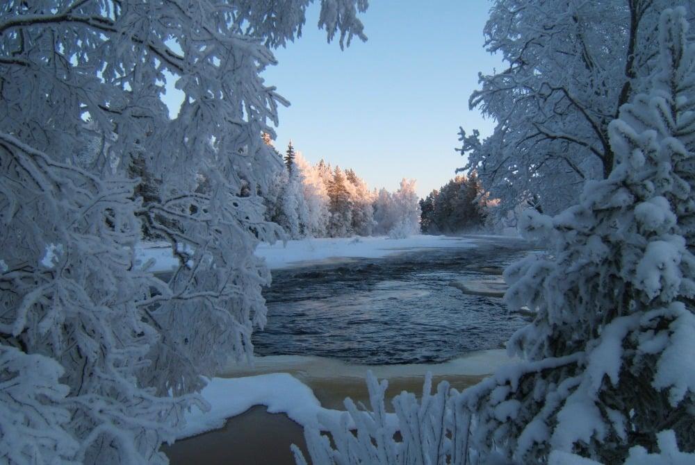 Koiteli Wintertag