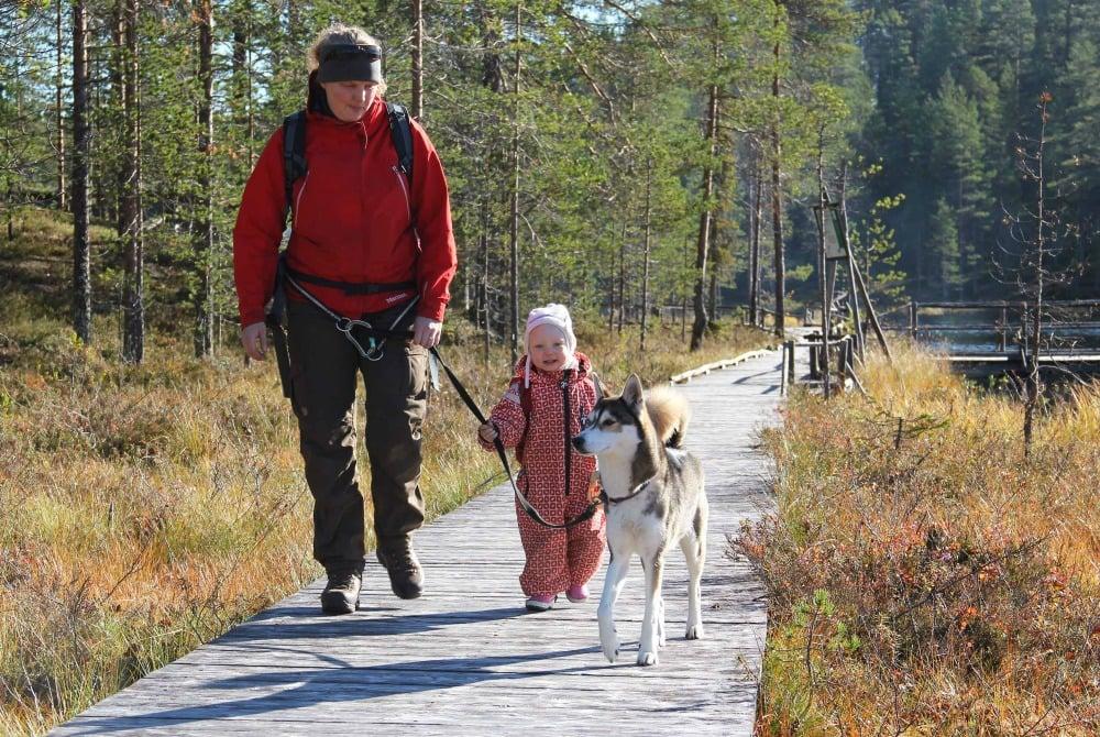 Syöte Nationalpark - Wanderweg