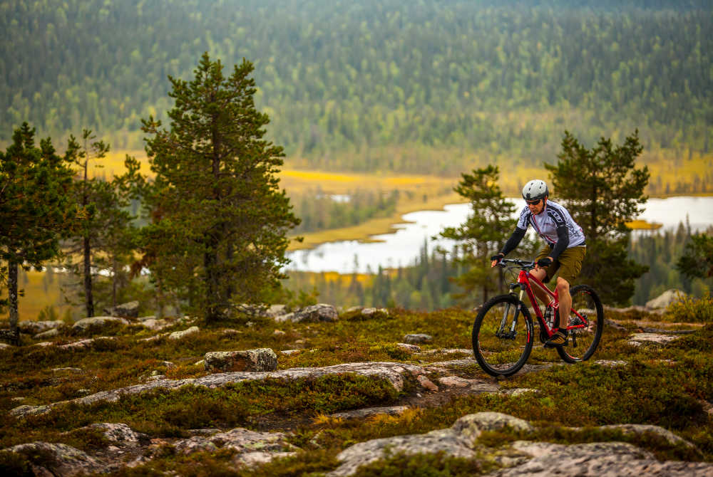 Salla-Mountainbike