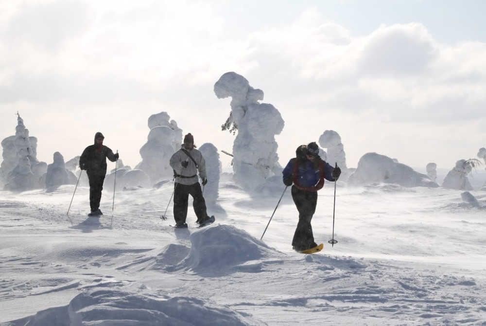 Salla-Schneeschuhwandern