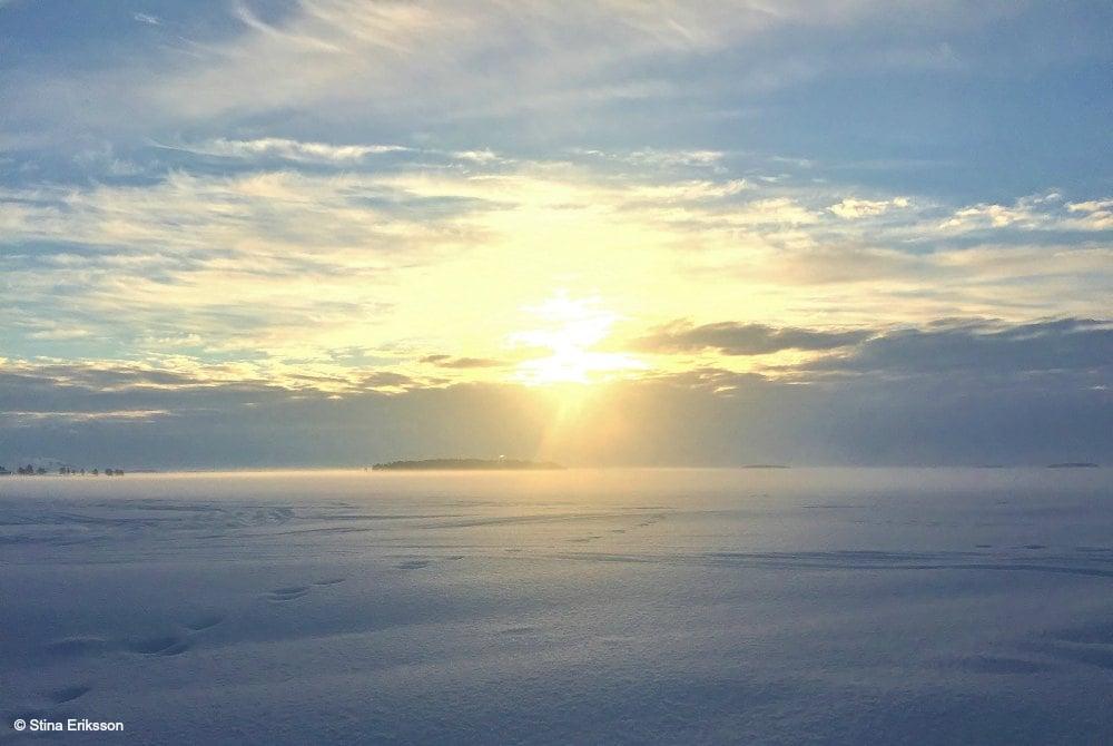 Wintersafari-in-Schwedisch-Lappland