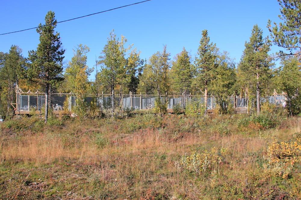 Huskyfarm in Kiruna