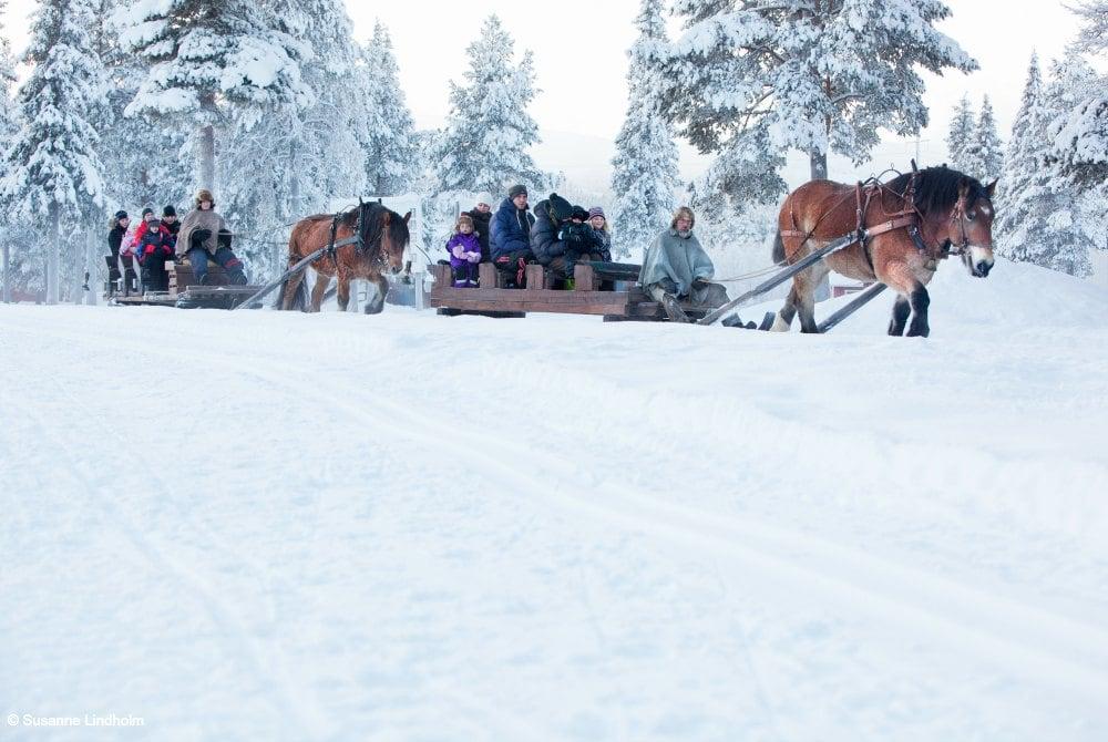 Magic of Lapland-Pferdeschlittenfart by Susanne Lindholm