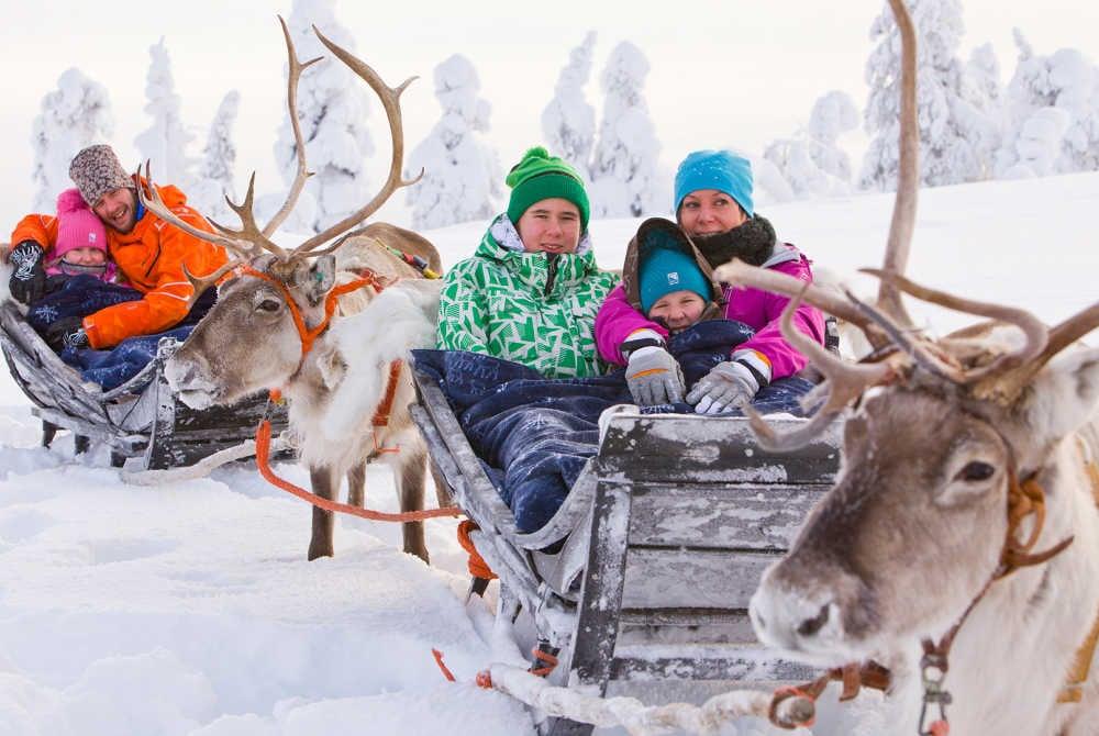 Special reindeer safaris in Pyhä