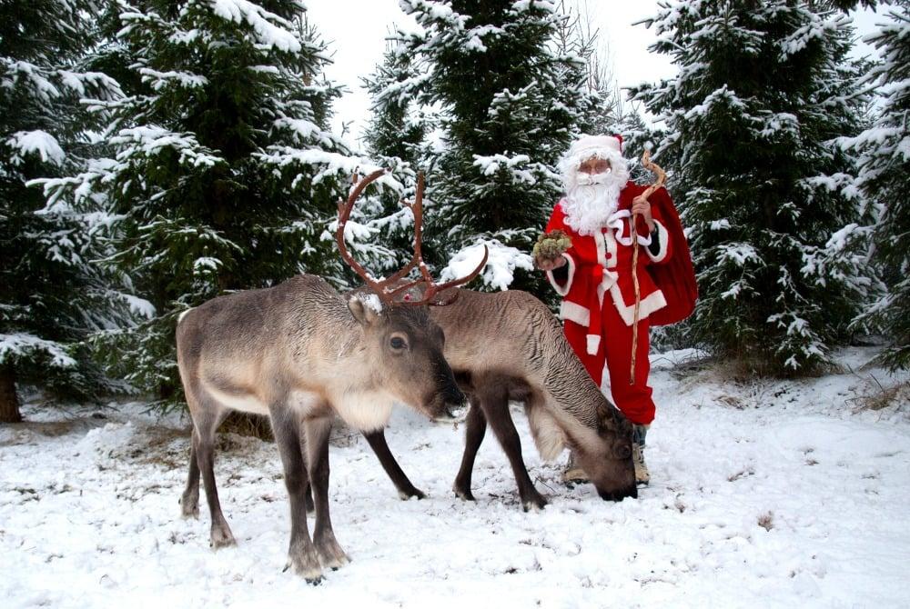 Finnische Weihnachten in Vuokatti