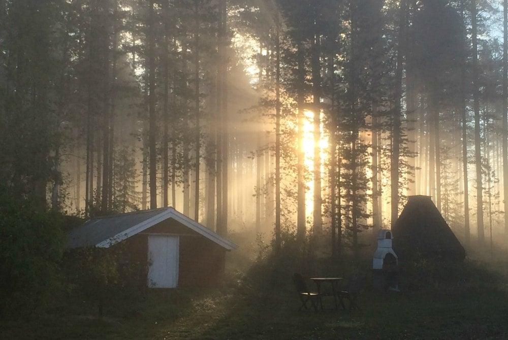 Stormyrbergets-Lantgård-Sommer_1000.jpg