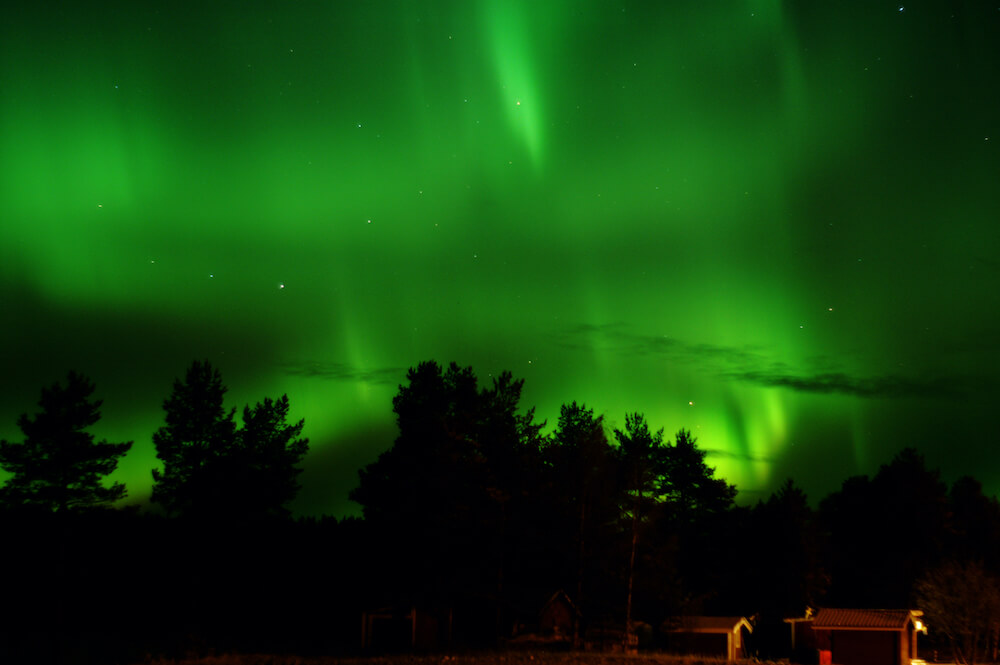 Umeå - Aurora Borealis - Nordlicht Pre-Winter Tour