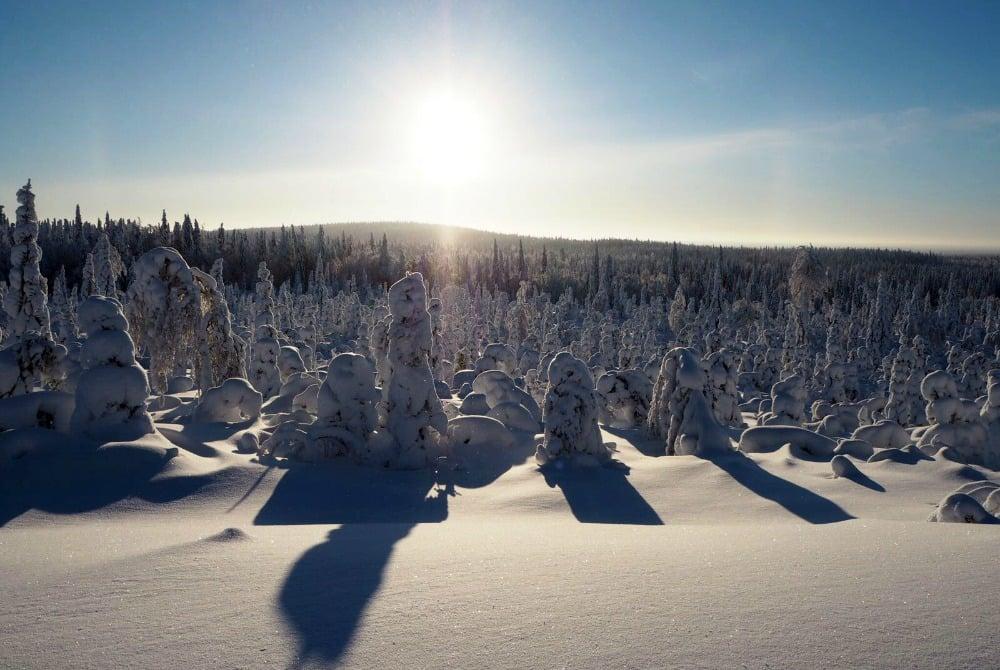 Vuokatti-Safaris-Finnische-Weihnacht-Vuokatti-Winter_1000.jpg