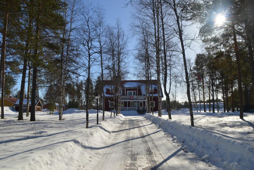 Wäckerlins BB Winter