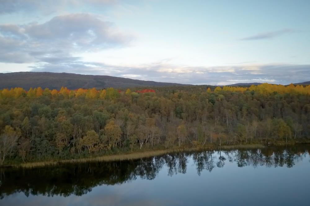 Drohnenvideo Herbst Finnland Screenshot