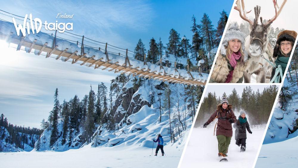 Winter Wild Taiga