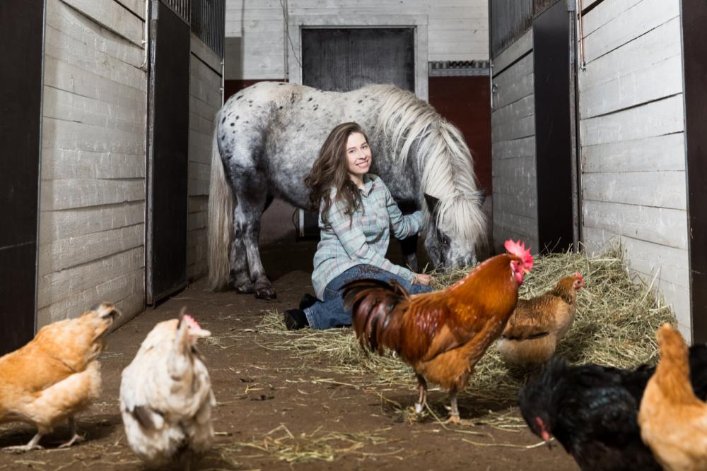 HaparandaTornio-Farm Escape-stable © Farm Escape