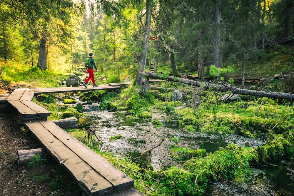 VAE Pallas-Yllästunturi National ParkHiking summer © Pallas-Yllästunturi National Park