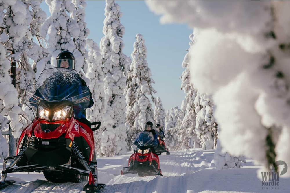 Wild Nordic-Snowmobile-Safari-into-the-Arctic-Circle-Forest3-copyright Wild Nordic Finland